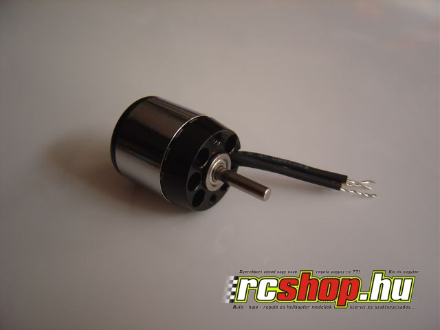 rcshop_profi_brushless_motor.jpg