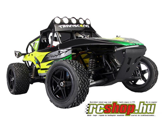 vortex_pro_li_po_edition_118_off_road_buggy_rtr-1.jpg