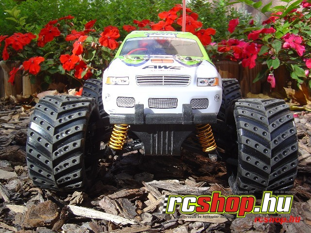 3racing_116_off_road_truck_rtr-3.jpg
